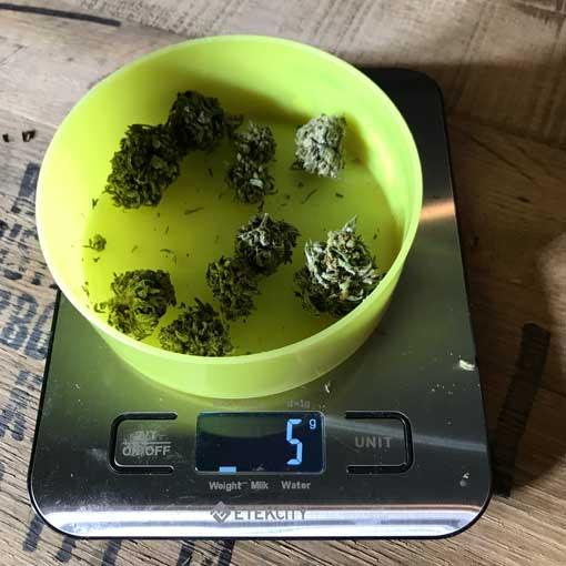 Cannatonic CBD Flower 5 grams